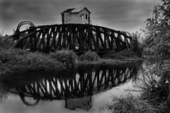 Puente viejo (rubenpiga) Tags: monocromo estructura monocromatico