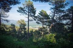 Abantos (Kirikob12) Tags: espaa spain fuji paisaje fujifilm sanlorenzo monte lanscape escorial peguerinos abantos xt10