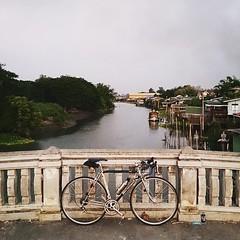 น่าอยู่มากๆ ... #Bottecchia #Cycling #Cycle #Bicycle #Bike #RoadBike #VintageBike #VintageRoadbike #NeoVintage #NeoVintageBike #CustomBike #Velo #MobilePhotography #BikeTravel #Bikie #Biketography #CyclingPhotography #CyclingPhotographyThailand #Thailand (RakkyStock) Tags: square squareformat lark iphoneography instagramapp uploaded:by=instagram