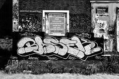 graffiti amsterdam (wojofoto) Tags: amsterdam graffiti ndsm wolfgangjosten basek wojofoto