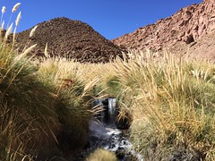 - 2016-05-12 at 14-51-18 + hot water springs