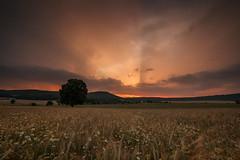spotlight (Rainer Schund) Tags: light sunset summer nature clouds germany nikon sommer natur spotlight gewitter cloudporn lightrays gegenlicht gewitterzelle nikond700 naturemasterclass natureexploring