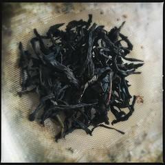 Oolang Supreme green tea (swanksalot) Tags: tea greentea