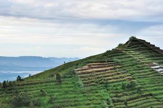 dieng plateau - java - indonesie 16
