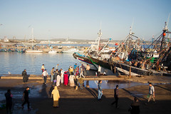 Morocco (fredcan) Tags: africa travel light people port boats evening seaside harbour crowd morocco shore shade maroc maghreb fishingboats essaouira atlanticcoast moroccans fredcan
