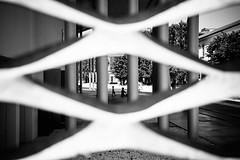 Through the fence (lorenzoviolone) Tags: blackandwhite bw italy playing roma monochrome childhood museum architecture kids fence children blackwhite reflex nikon contemporary streetphotography streetphoto dslr lazio contemporaryarchitecture contemporarymuseum maxxi fav10 agfascala200 throughthefence vsco d5200 streetphotobw nikond5200 vscofilm photomarathon:rome=2016
