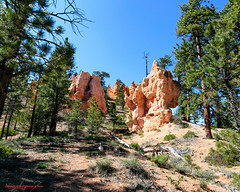 Bryce Canyon National Park (mikerhicks) Tags: travel arizona usa southwest nature geotagged outdoors photography utah spring unitedstates desert hiking adventure event backpacking bryce brycecanyon marblecanyon brycecanyonnationalpark onemile geo:country=unitedstates geo:state=utah camera:make=canon exif:make=canon tokinaatxprosd1116f28ifdx exif:lens=1116mm exif:aperture=10 geo:city=bryce exif:isospeed=100 exif:focallength=11mm canoneos7dmkii camera:model=canoneos7dmarkii exif:model=canoneos7dmarkii geo:lat=3761988000 geo:lon=11215864333 geo:lon=11215864333333 geo:lat=3761988 geo:location=brycecanyon
