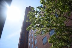 Sun Looking Through (Sam DeGenova) Tags: baltimore buildings city cars sun shine reflections people street america