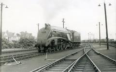 img759 (OldRailPics) Tags: steam aberdeen kingfisher british locomotive railways ferryhill 61b 60024