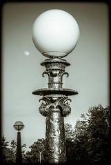 Forest Park Lamps (Michael Shoop) Tags: blackandwhite bw moon lamp stlouis artdeco saintlouis forestpark stlouisartmuseum arthill michaelshoop