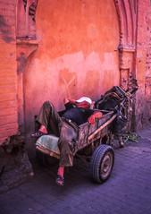 Transporter taking a nap (PaulHoo) Tags: film analog velvia fujifilm color saturized saturization 2016 marrakech marocco africa city urban contax t2 lightroom scan 35mm medina sleeping nap transporter asleep street candid ilobsterit