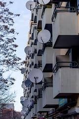 Spring of the Dishes (ToDoe) Tags: winter tree spring dish balkon dishes baum schssel satellitedish frhling balkone satelittenschssel dishaerial rooftopdish schsselfrhling