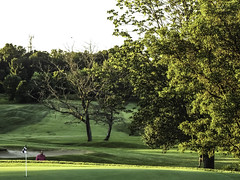 Audubon Sanctuary (EX22218 - ON/OFF) Tags: usa green grass golf kentucky towers alcohol northamerica louisville burned blight deadtrees drunkdrivers audubonsanctuary lovelycity