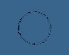 Go Round (iofdi) Tags: birds electriclines hss allconnected sliderssunday