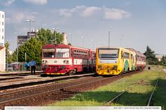 810.290-7 + 814.103-8 | tra 341 | Uhersk Hradit (jirka.zapalka) Tags: summer train cd os uherskehradiste stanice rada810 rada814914 trat341