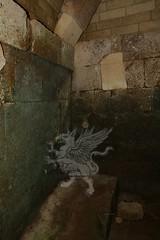 Necropoli di Orvieto_07