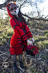 Through the WOods 7479 (JoDi War) Tags: trees sunset red wild nature grass fairytale dark lost blood woods wolf dress boots lace gothic victorian velvet hood storybook rhyme grandmothershouse nurseryrhyme throughthewoods storytale
