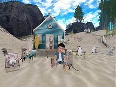 Micey! (Zaidon Resident) Tags: ocean blue trees people mountains cute beach boys grass fashion animals clouds hair landscape photography photo sand shoes babies photographer exploring blogger sneakers mice secondlife blogging reality dope fit ionic photograpy photooftheday virtural toddleedoo