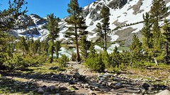 20160625_091729 (lovz2hike) Tags: lovz2hike duck lake pass trail barney pika mono county mammoth lakes coldwater campground fishing hiking backpacking wonderlust fresno inyo sierra nevada john muir wilderness