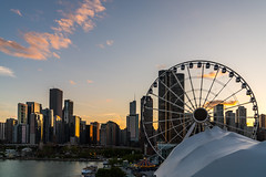 Navy Pier, Chicago DSC03289 (nianci pan) Tags: sunset sky urban sun lake chicago bird water wheel architecture sailboat sunrise river landscape boat illinois pond cityscape dusk sony down lakemichigan ferriswheel navypier pan silhoutte sonyalphadslr nianci sonyphotographing