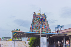 Namo Narayanaya (Shan | Capture Machine) Tags: morning sky india art colors architecture canon temple artwork ancient god outdoor stones stonework traditional ngc statues trust gods 1855mm shan devotee chennai prayers tamilnadu twop cwc ancientart ngs godislove natgeo triplicane templetank praytogod morningscenes chennaiweekendclickers weekendclickers tamiltraditional triplicanetemple capturemachine shanmuganathanphotography walk536