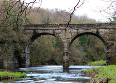 Viaduct, Derwent Park, Northumberland (Hairy Caterpillar) Tags: bridge stone river viaduct northumberland derwentpark
