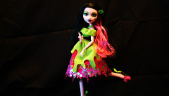 Monster_High_2 (Brundlefly85) Tags: monster toys scary dolls