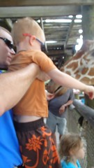 OLYMPUS DIGITAL CAMERA (drjeeeol) Tags: zoo charlie giraffe fav triplets fathersday toddlers chaz 2013 fathersday2013 57monthsold