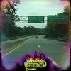 #EZoo5 on the way to electric zoo