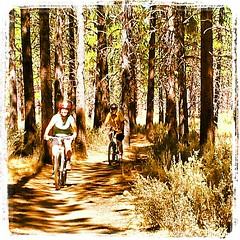 Mountain biking through sagebrush, bitterbrush and ponderosa pine #abitofheaven #pinesmell (wendysoucie) Tags: square squareformat lordkelvin iphoneography instagramapp uploaded:by=instagram