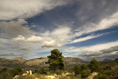 IMG_3311 Landscape - country Benifato  - Seen On Explore - 2013-10-02  # 21 (jaro-es) Tags: españa tree sol nature clouds canon arbol spain day cloudy natur wolken natura explore nubes sonne baum spanien costablanca naturesfinest spanelsko naturewatcher eos450 naturemaster