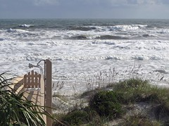 Early November Nor'easter, Anastasia Island b (amy32080) Tags: november storm waves florida dunes crescentbeach hightide noreaster anastasiaisland 32080