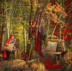 ~~~red velvet forest~~~ (xandram) Tags: autumn woman collage photoshop chairs manipulation velvet textures cloak