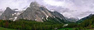 Alpietan galdute