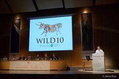 WILD10: 4 October 2013
