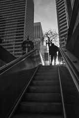 Ascent (Jim Watkins Photography) Tags: sanfrancisco california street market escalator embarcadero
