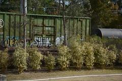 DTS_1774 (VIAL GRAFFITI) Tags: bench graffiti texas houston trains freighttrains freight graffititrain benching fr8trains fr8heaven dailybench