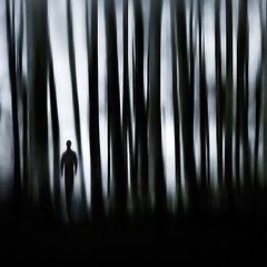the survivor (fifich@t / Franise / off) Tags: bw strange silhouette lost woods loneliness darkness fear surreal blurred concept unreal conceptual dreamlike ghostly parallelworld symbolic visionary lostsoul phantasm peur inhospitable outoftheordinary squarepicture cataclysm mydarkside nikond300 fuckinglife nikkor1685vr blackisthecolour skancheli truthandillusion hostileworld conceptualpicture fifichat1 frs oneiricworld struggletostayalive fificht frs