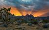 Red Rock Canyon Sunset (Amy Hudechek Photography) Tags: redrockcanyon winter sunset cactus nikon desert lasvegas nevada conservation national area rays sunbeam happyphotographer mygearandme mygearandmepremium mygearandmebronze mygearandmesilver mygearandmegold mygearandmeplatinum mygearandmediamond amyhudechek