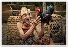 The Balinese Elderly And His Fighting Cock (Vin PSK) Tags: portrait bali culture cock elderly fighting thebalinese {vision}:{outdoor}=0799 {vision}:{text}=0546
