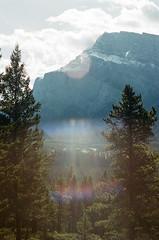 Flared (Lyndsay Jobe) Tags: mountains film yellow rockies ae1 alberta portra bannf