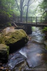Leura Cascades Fuji X100s 3932 (Gary Hayes) Tags: waterfall sydney australia bluemountains cascades leura vision:mountain=0513 vision:sky=0503 vision:car=0511 vision:outdoor=0876
