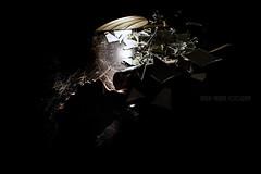 Ópera (nataliavalarini) Tags: atlanta light canon mirror df opera theater sigma chiaroscuro brasilia bsb spectacle mirrormirror espetaculo thebestphotographers brazilianphotographers valarini canon70d nataliavalarini
