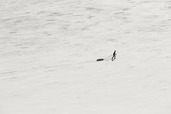Skier (Rolland - Tomas) Tags: winter mountain ski landscape vinter outdoor himmel arctic tur skyer fjell sn friluftsliv landskap liten
