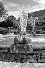 Grenouille (florianedubois19) Tags: water eau fontaine jardins grenouille