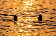 Loves in the...water (rudolphlomax) Tags: light sunset pordosol sol against de lights natural final luzes crepusculo casal sombras tarde nofilter noivos pauba epico