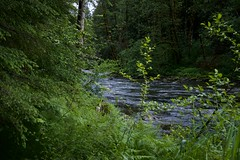 Snake River (Herculeus.) Tags: usa nature oregon river landscape outside outdoors woods outdoor or may bridges 2016 5photosaday wildwoodcascadestreamwatch daytriptomthood ontheroadtomthood snakeriveror
