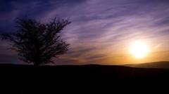 Sun setting (michaelharper69) Tags: wales landscape sunsetting