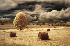 Hay Bales (shutterclick3x) Tags: field ir countryside meadow infrared hay frankloose