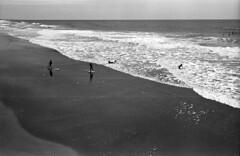 Skimming (F. Neil S.) Tags: ocean film beach monochrome analog 35mm blackwhite sand surf waves dunes northcarolina surfing atlantic negative skimboard xtol ilfordfp4 skimming nikonf6 blancetnoir pierview crystalcoast boguebanks selfdev southernbanks